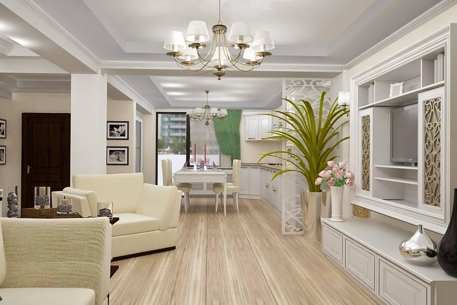 Design interior living clasic design interior constanta for Design interior case